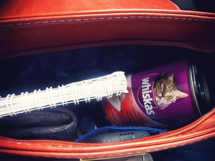 Cat food. Inside my bag.